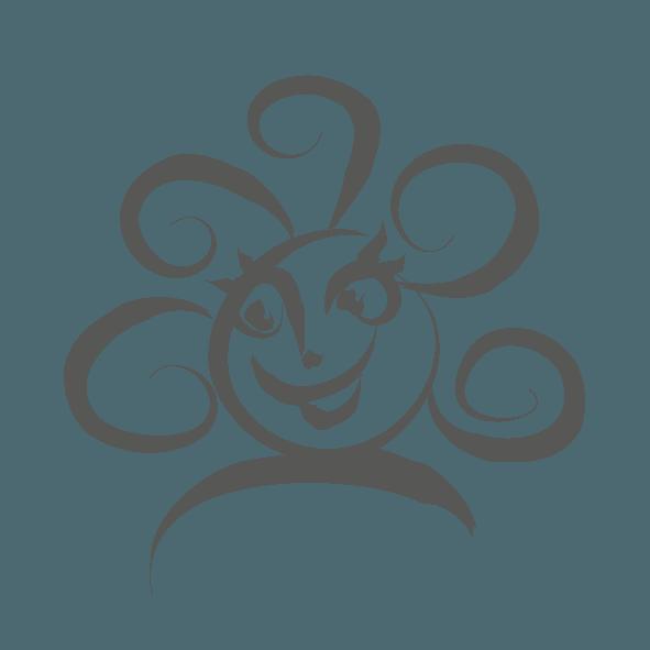 Medicus ikoner 201426