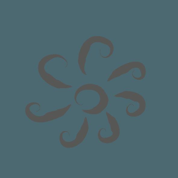 Medicus ikoner 201438